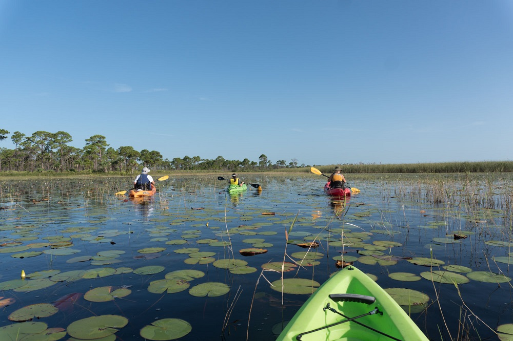 McCarty Ranch Kayak