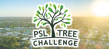 highlights-psl-tree-challenge