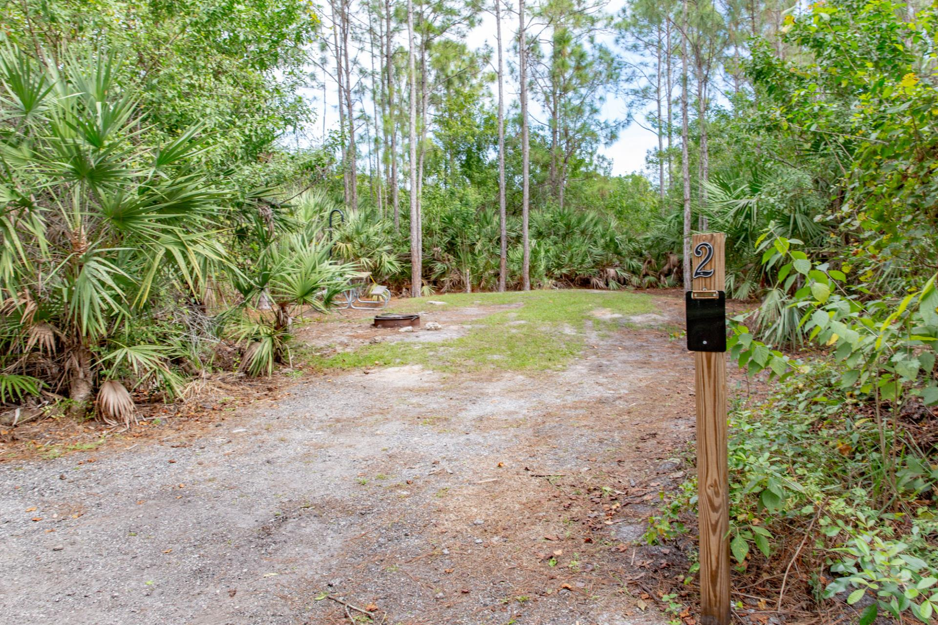 McCarty Ranch Preserve | Port St  Lucie