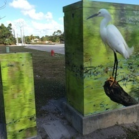 utility box covered with photo of white egret